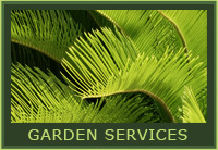 Thompson Landscapes - Cayman Islands - Garden Services